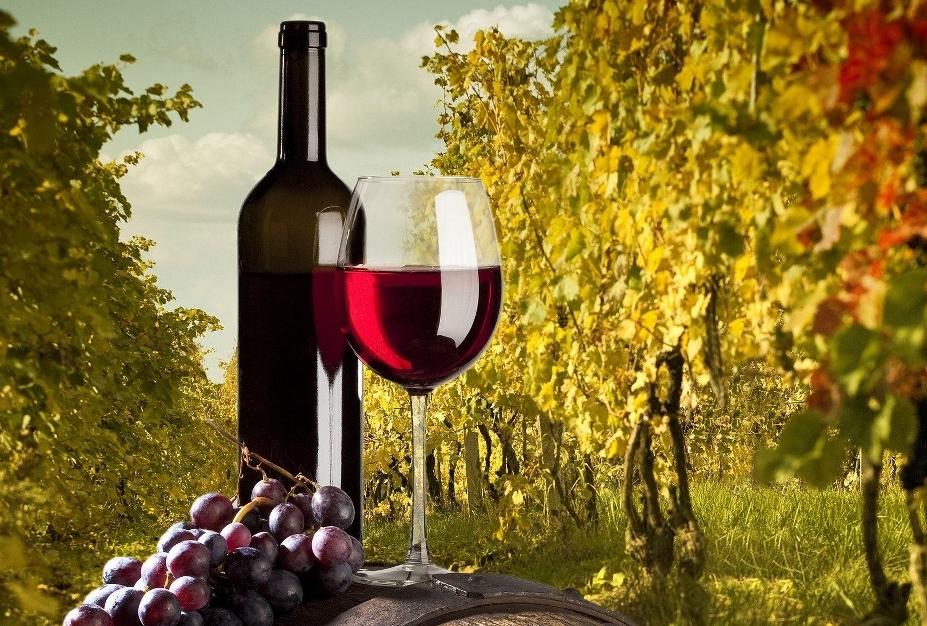 ไวน์ úú(1024x629)